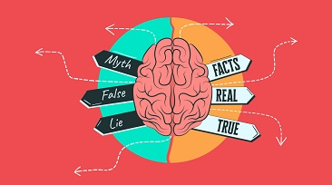myths of brain